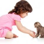 O convívio entre crianças e gatos